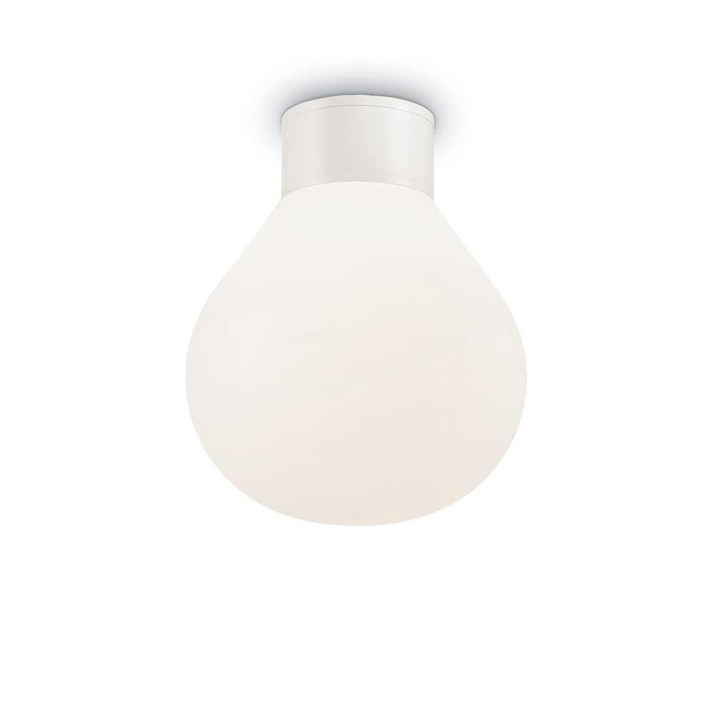 CLIO PL1 WHITE
